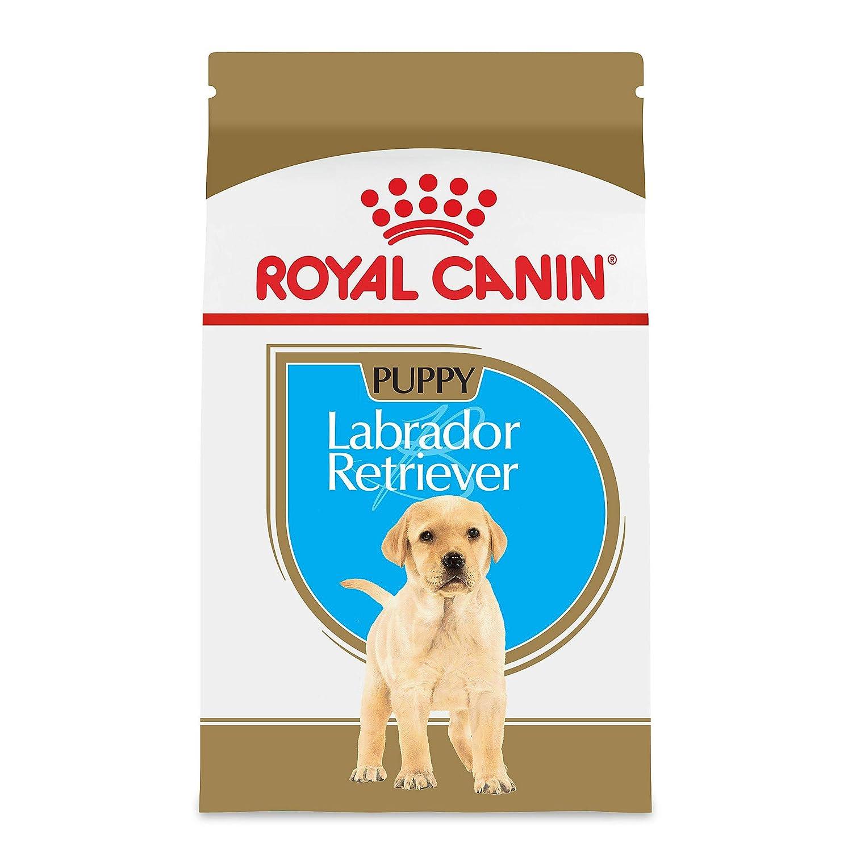 4.Royal Canin Breed Health Nutrition Labrador Retriever Puppy Food