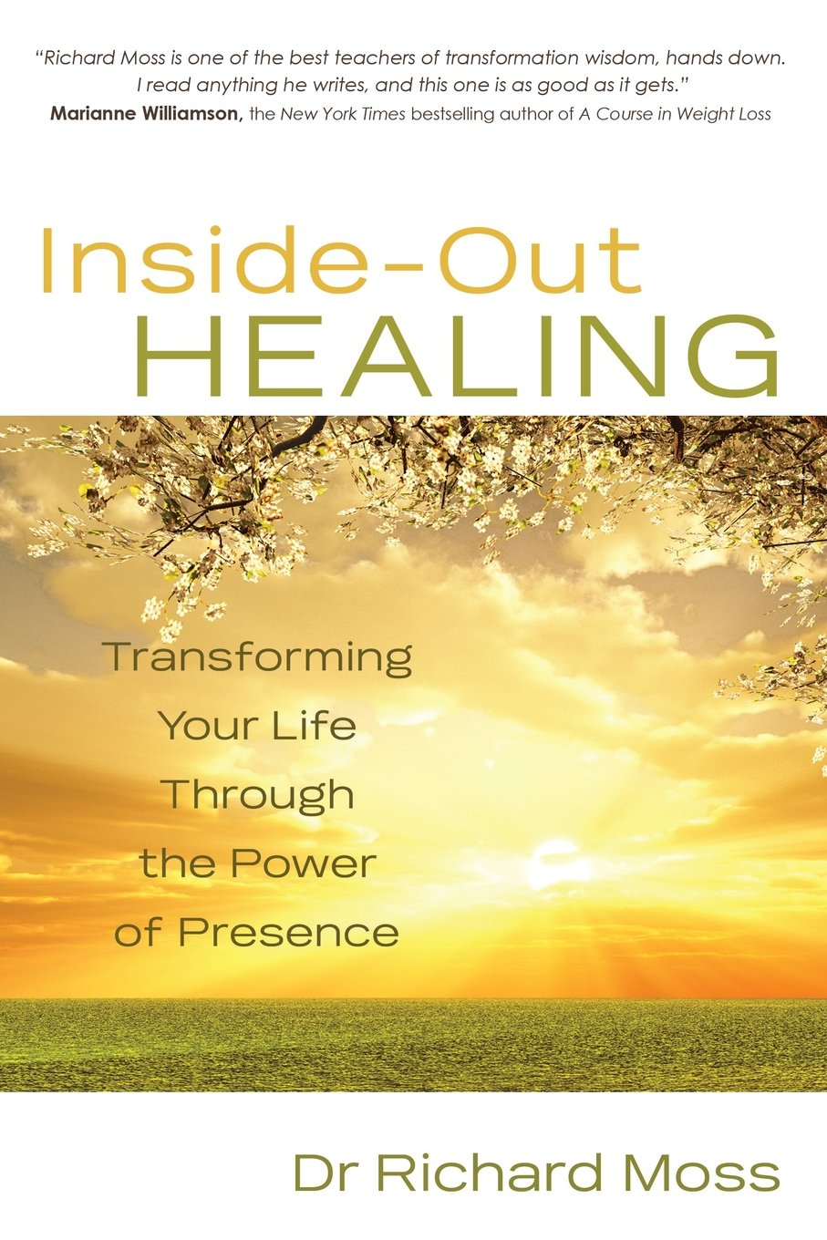 Read Online Inside-Out Healing: Transforming Your Life Through the Power of Presence PDF