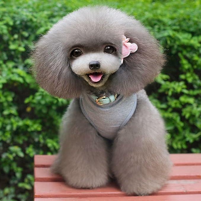 Amazon.com : DealMux camisa do cão dos EUA 1776 roupas para cães de pequeno porte do cão do gato Vest Vestuário Trajes de cachorro Verão para Chihuahua ...