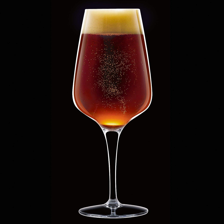 350 ml Chef /& Sommelier ARC N8280 Beer Premium Biertulpe transparent 6 St/ück Bierglas Krysta Kristallglas