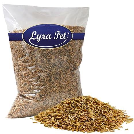 2 kg Lyra Pet proteína Mix Harina gusanos & Gammarus & Gamba ...