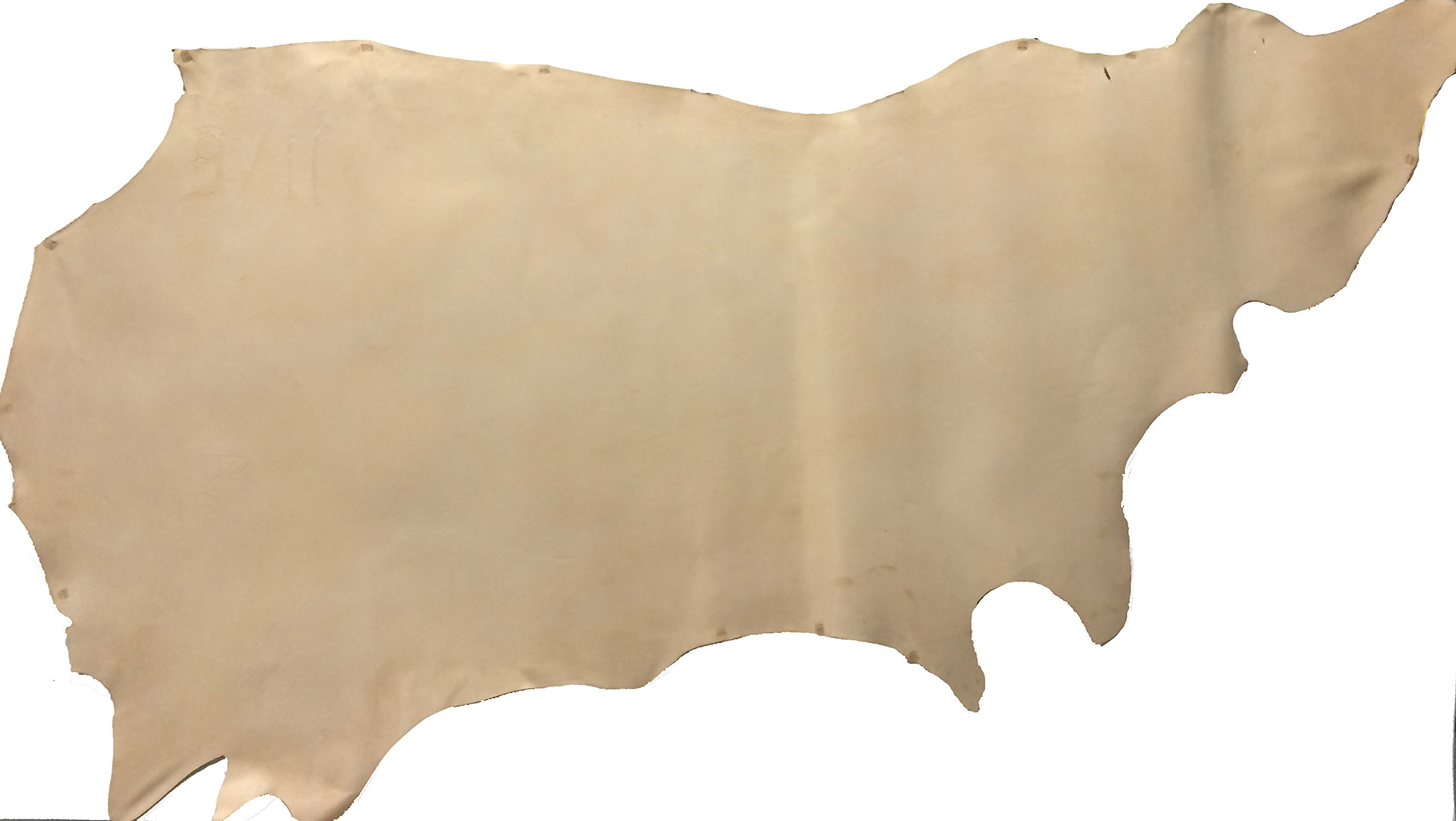 Oak Cowhide Side 5/6 oz