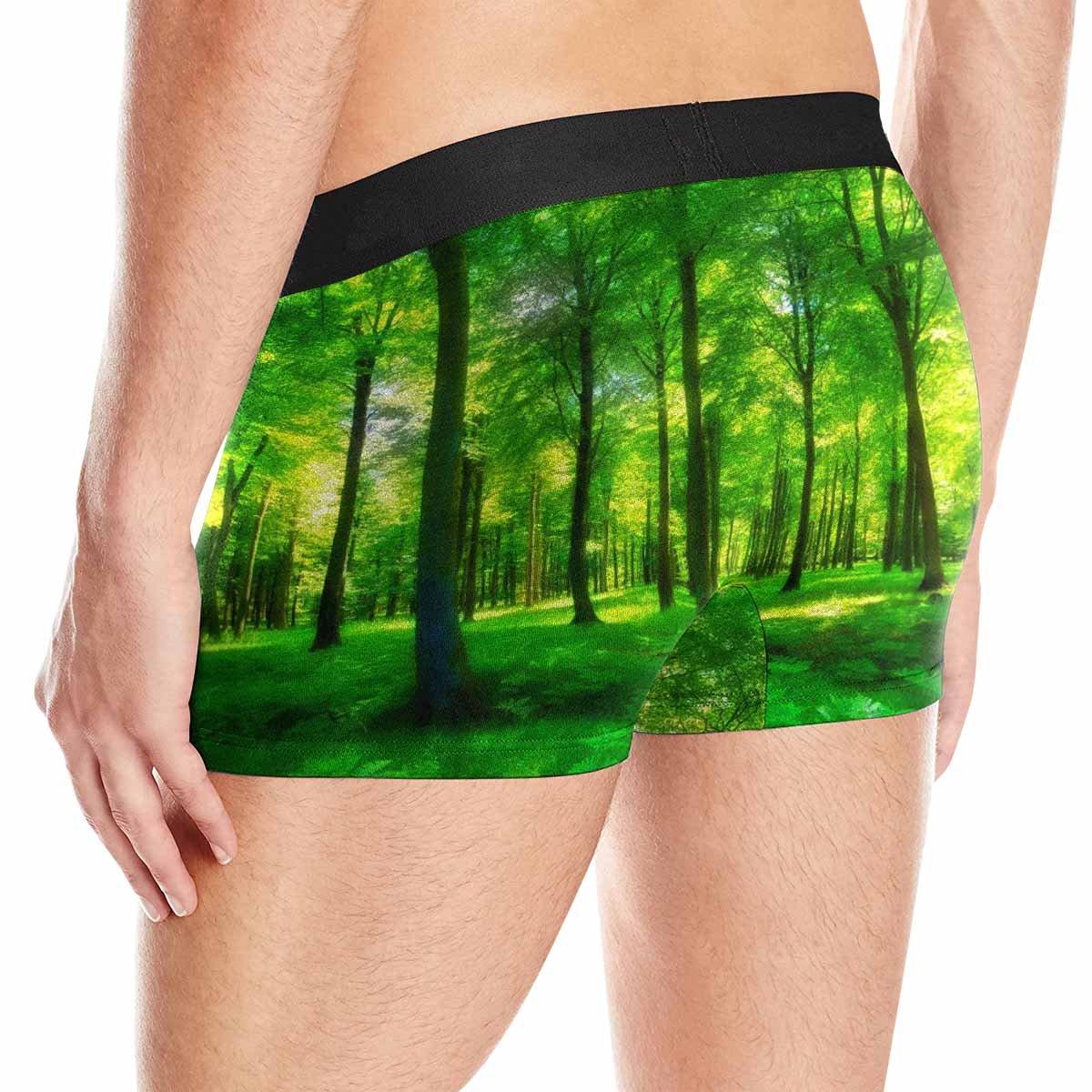 INTERESTPRINT Mens Boxer Briefs Underwear Sunlight in A Green and Lush Forest XS-3XL