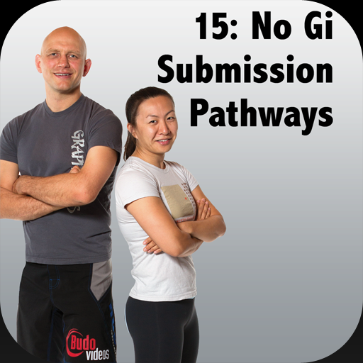 How to Defeat the Bigger, Stronger Opponent with BJJ, Vol 15 - No Gi Submission Pathways