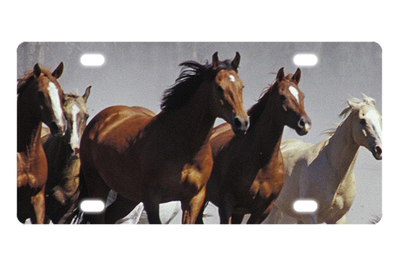 coolstuffs Wild Running Horses Aluminum Novelty License Plate Car Front