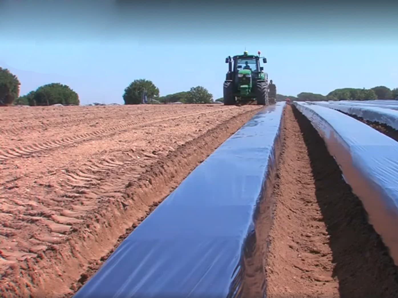 PAMPOLS Bobina de Film de Acolchado para plantaciones ...