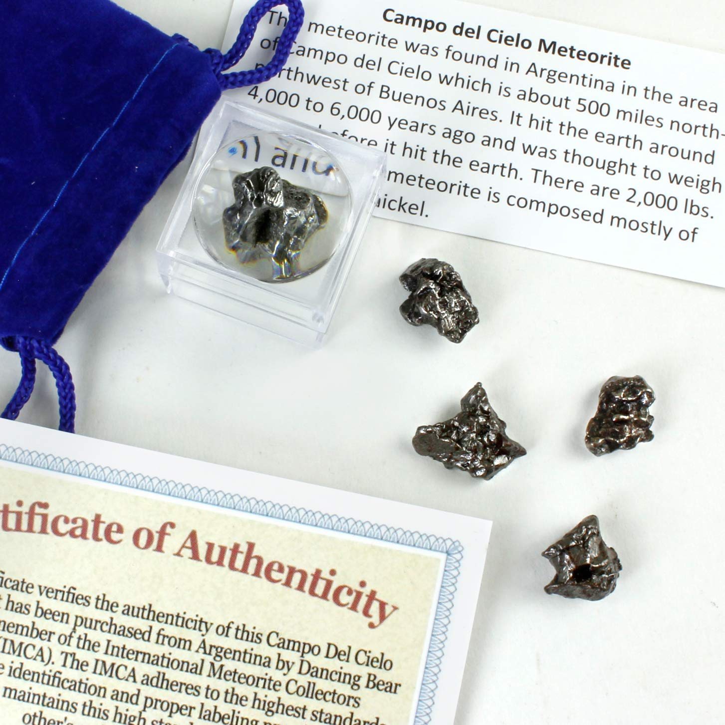 Meteorite from Space, 5 pcs Campo del Cielo from Argentina/ Educational Card & Magnifying Box, Dancing Bear Bran