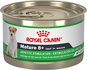 Royal Canin Canine Health Nutrition Mature 8+ Loaf in Sauce Canned Dog Food, 5.2 oz Can (Pack of 24)