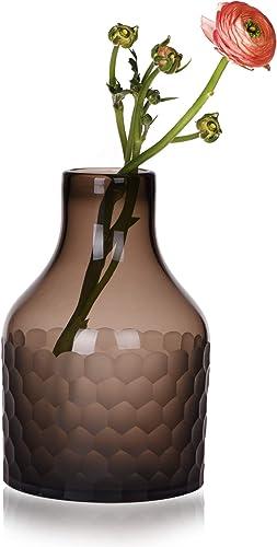 CONVIVA Glass Vase