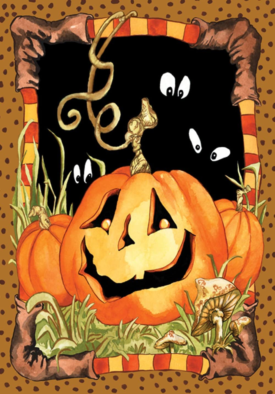 Toland Home Garden Jack Pumpkin 28 x 40 Inch Decorative Spooky Jack o Lantern Halloween House Flag