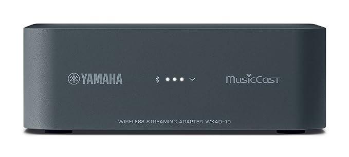 Yamaha MusicCast WXAD-10 - Preamplificador, Color Negro: Amazon.es: Electrónica