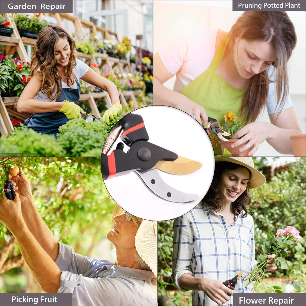 Bypass Garden Secateurs with Sponge Handle Protector Garden Pruners Inwee Pruning Shears Perfect For Trees Plants Hedges