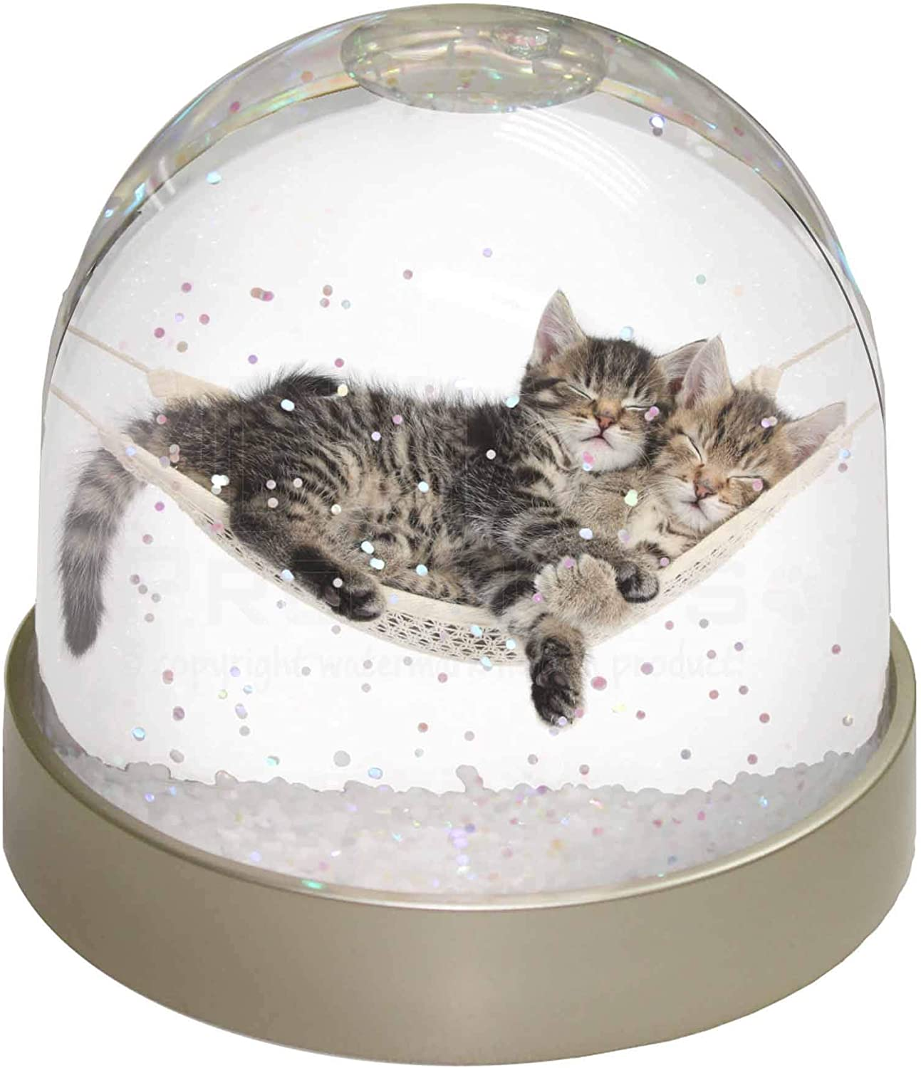 Two Kittens in Hammock Photo Snow Globe Waterball Stocking Filler Gift AC-206GL