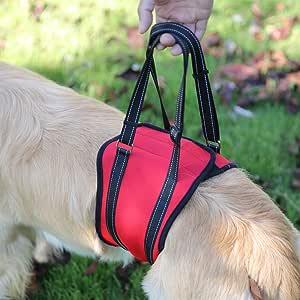Arnés de elevación para perros Rainbowsun con soporte para patas ...