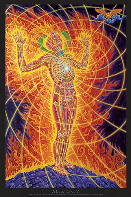 Alex Grey - Holy Fire - Poster