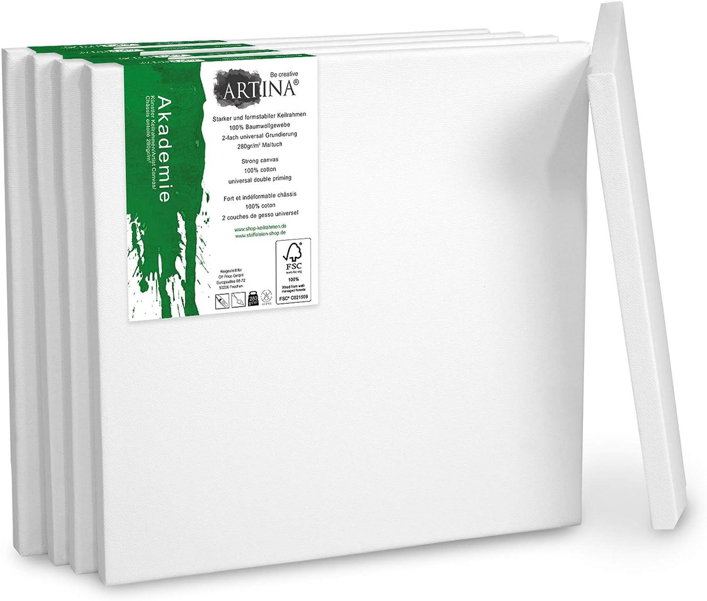 Artina Akademie Set de 5 lienzos - el Set de lienzos más codiciado certificación FSC® - 100% algodón 280g/m² Lienzo y Bastidor en Blanco (15x15 cm, Blanco): Amazon.es: Juguetes y juegos