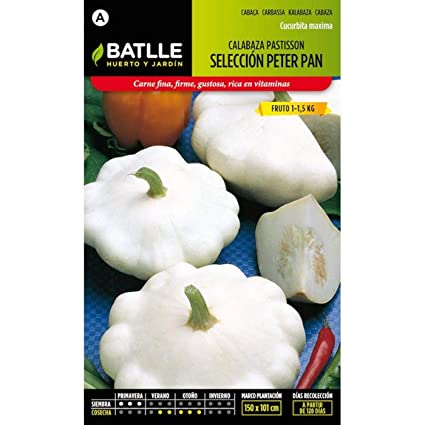 Amazon.com : Batlle Vegetable Seeds - Pumpkin White patisson ...