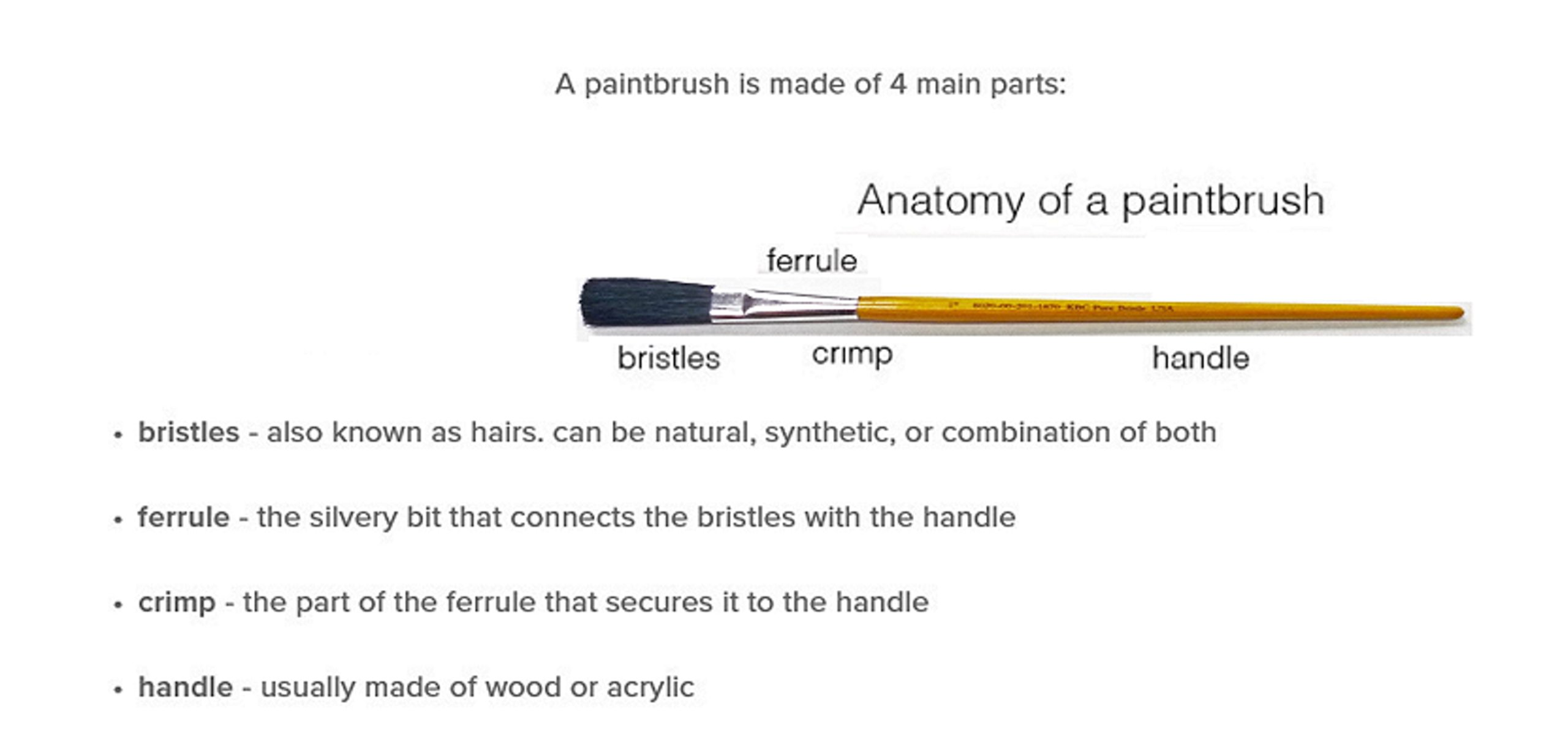 1'' Fitch China Bristle Wood Handle Artist Paint Brush for Acrylic, Oil, Watercolor, Gouache and Plain Air Painting (PACK-OF-100)