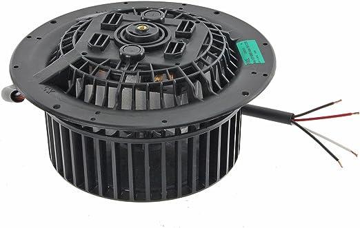 SPARES2GO 135 W + Motor de ventilador de la unidad para ARTHUR MARTIN direccional de las agujas del reloj para campana extractora: Amazon.es: Hogar
