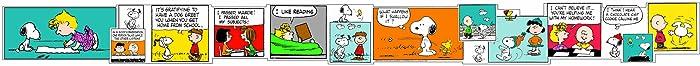 Eureka Peanuts Comic Bulletin Board Trim and Classroom Decoration for Teachers, 12pc, 3.25'' W x 37'' L