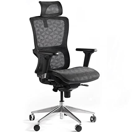 E EVERKING High Back Mesh Ergonomic Office Chair With Adjustable Headrest  And Armrest, Modern 360