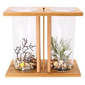 dDanke Kit de acuario de 360 grados para peces con jarrón de cristal ...