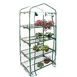 Himanjie domeistico PVC gardino, conservatorio mini giardino capannone serra vegetale/verdura/frutta(senza struttura del ferro) (69 x 49 x 155 Cm)