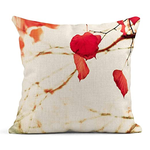 Kinhevao Cojín Naranja 80S Rosa Coral Hojas de otoño sobre ...