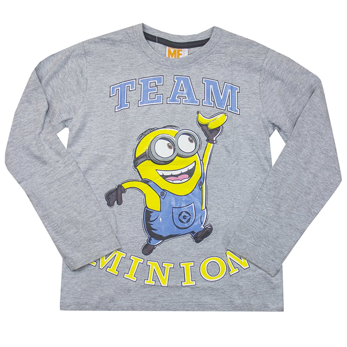 Despicable Me Boys Team Minions Long Sleeve T-Shirt Top Grey Sizes from 3 to 10 Years