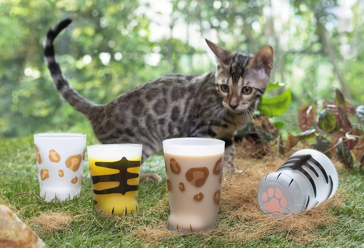 Aderia Japan Japanese Glass Tumbler Cup 300ml Cat Paw Coconeco Pink Pawn Ball Panther Cat 6046 Japan Import