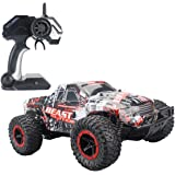 Fistone RC Car 2.4G High Speed Racing Cars 20km/h 1:16 Beast Radio Control Monster Truck Rock Off-Road Vehicle Buggy Hobby Electronic Game Toys Model (Red)