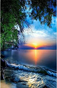Diamond Painting Beach Sunrise Kits for Adults Full Round Drill Paintings Embroidery Pictures Arts Craft for Home Wall Decor 5D Painting Dots Kits Landscape(13.7x17.7 inch)