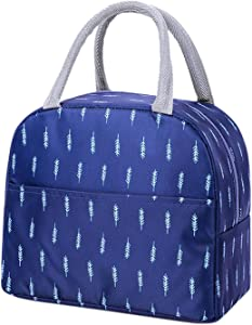 Lunch Bags for Women and Men, Insulated Cooler Bag, Tote Bag, Food Storage Bags, Lunch Box Container for Camping, Picnic, Work