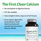 AlgaeCal Plus - Plant-Based Calcium Supplement with Magnesium, Boron, Vitamin K2 + D3 | Increases Bone Strength | All Natural Ingredients | Highly Absorbable | 120 Veggie Capsules per Bottle