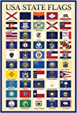 Laminated USA 50 State Flags Chart Poster 13 x 19in