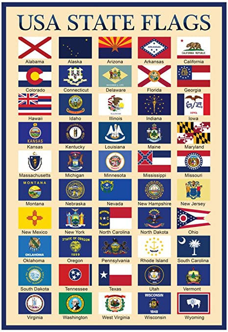 Amazon.com : USA 50 State Flags Chart Poster 13 x 19in : Prints ...