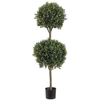 Amazon.com - 4' Double Ball-shaped Boxwood Topiary in Plastic Pot ...