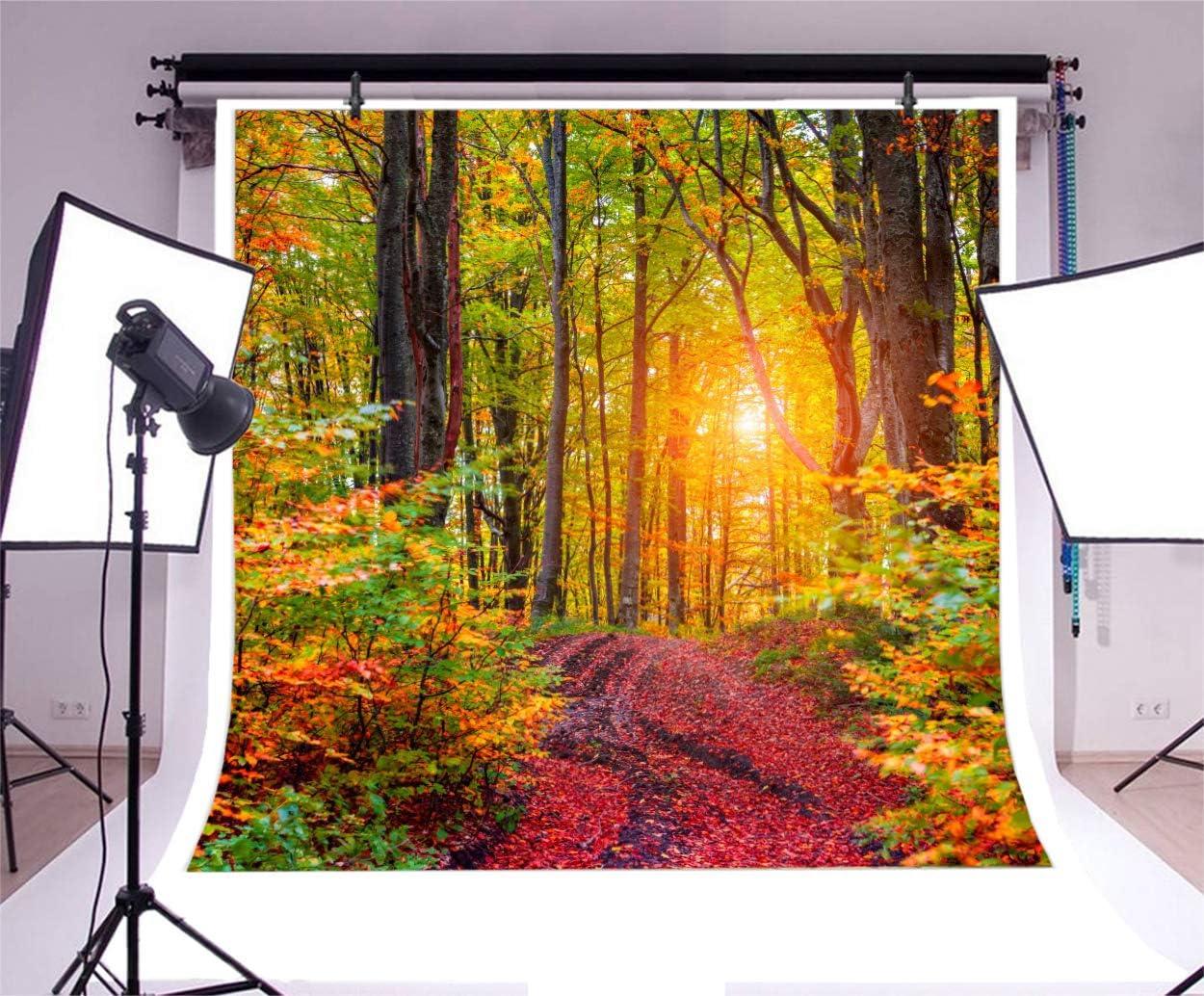 Baocicco Vinyl 10x10ft Autumn Landscape Backdrop Photograph Background Forest Outdoor Tourist Thanksgiving Festival Party Background Indoor Room Wallpaper Children Adult Portraits Photo Studio