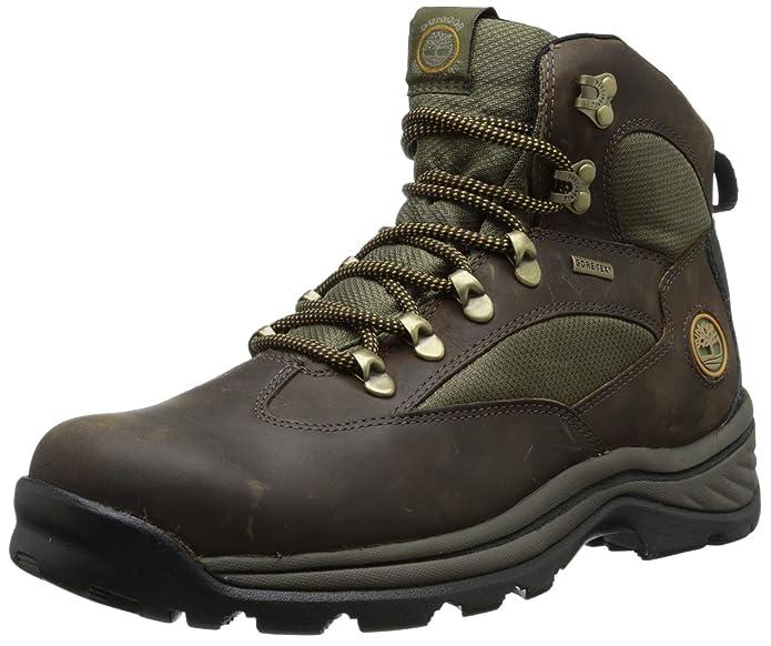 best lightweight hiking shoes Men's Chocorua Trail Mid Waterproof