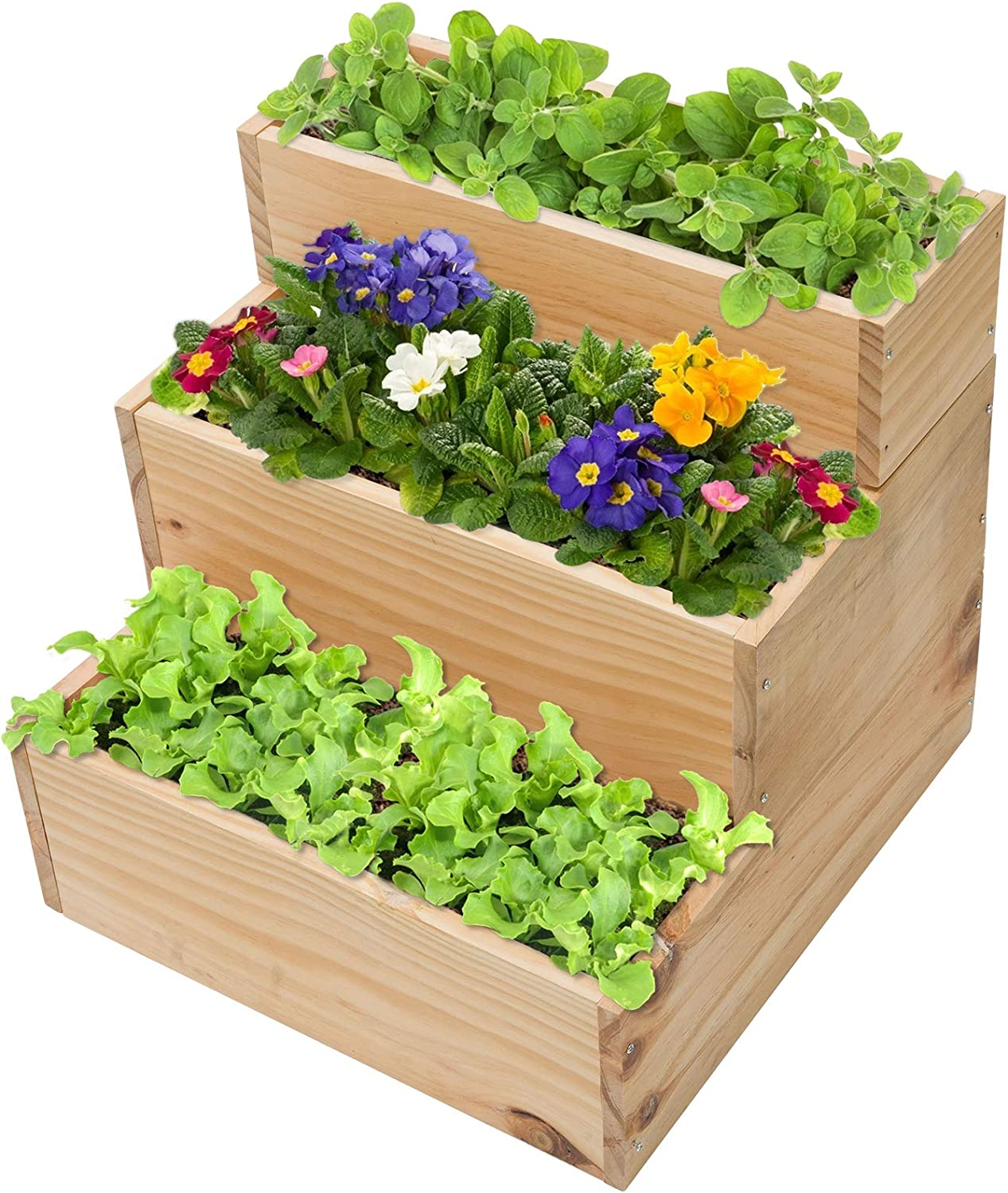 3 Tier Wooden Raised Garden Bed- 16 × 16 × 16.5 Inch Small Elevated Wooden Garden Bed Planter Box Pine Wood Garden Plant Container with Tool Set for Growing Vegetable Flower Herb Indoors Outdoors