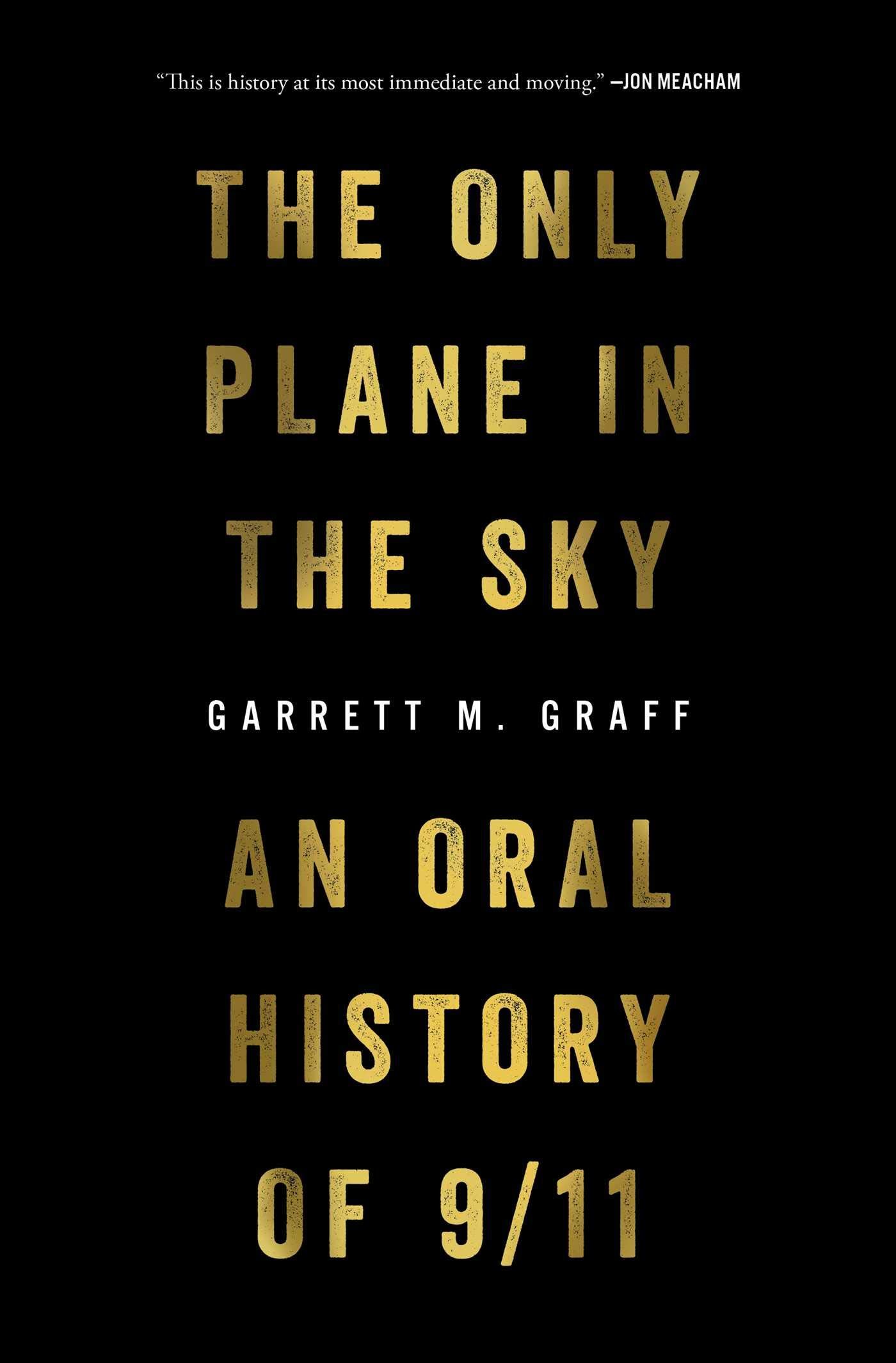 Image result for the only plane in the sky book