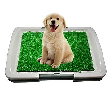Inodoro De Bandeja para Perros Césped Artificial, 3 Capas Puppy Potty Pad, Fácil De