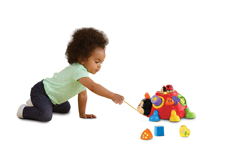 Mehrfarbig Vtech 80-522304 Fr/öhlicher Lernk/äfer Babyspielzeug