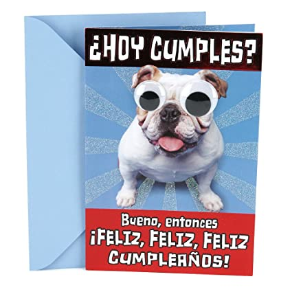 Hallmark Vida Spanish Funny Birthday Greeting Card Dog With Rolling Eyes