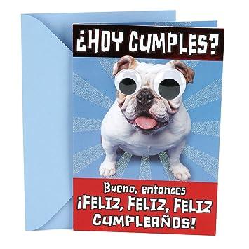 Hallmark Vida Spanish Funny Birthday Greeting Card Dog With Rolling Eyes Amazoncouk Office Products