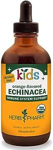 Herb Pharm Kids Certified-Organic Alcohol-Free Echinacea Glycerite Liquid Extract, 4 oz