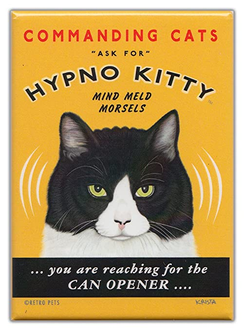 Amazon.com: Retro Gatos nevera imanes: Hypno Kitty | clásico ...