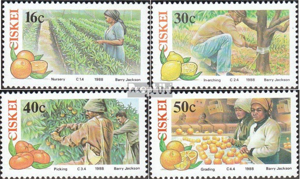 1988 Zitruswirtschaft Pflanzen Ciskei 141-144 kompl.Ausg. Briefmarken f/ür Sammler Prophila Collection S/üdafrika