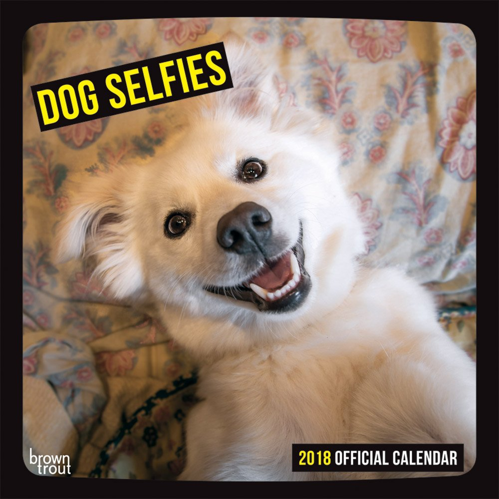 Dog Selfies 2018 12 x 12 Inch Monthly Square Wall Calendar, Pet Humor Puppy:  BrownTrout Publishers: 5055463105682: Amazon.com: Books