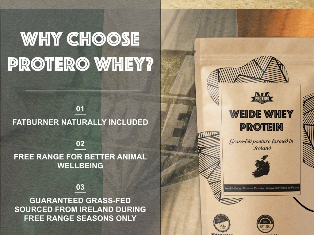 Protero Weide Whey Protein - Grass Fed (Cacao, 1kg): Amazon.es: Salud y cuidado personal